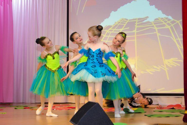 Помощь ласточке, балет Дюймовочка, 2019 год